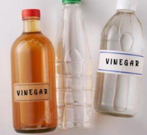 vinegar for remove pee on floor