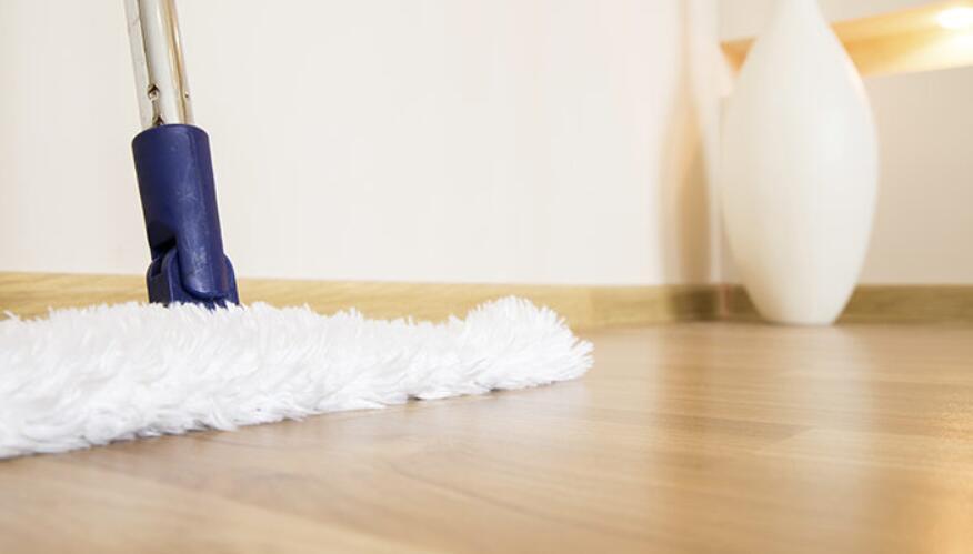 best microfiber mop for laminate floors