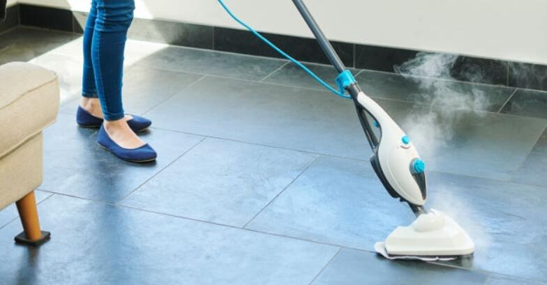 Top 5 Small Steam Mop Reviews For 2020 Mop Reviewer