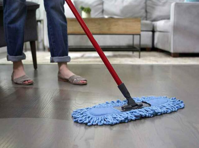 home mop and bucket combo