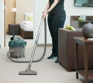 canister steam mop with brushes