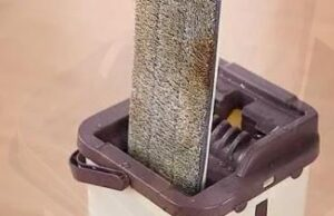 how to clean a mop bucket