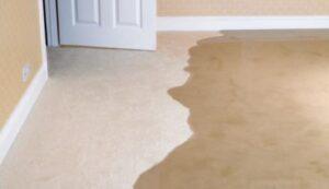 how to make carpet freshener